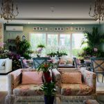Orchidea Flowers, Coffee and tea rooms, 20 restaurants in Accra